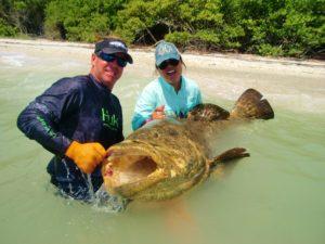 Boca Grande goliath grouper