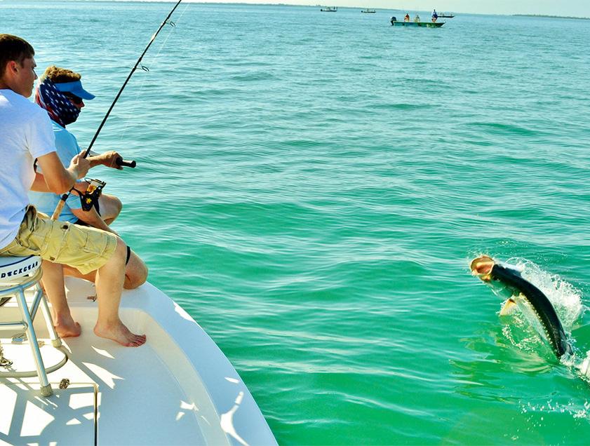 Boca grande englewood tarpon fishing pictures florida for Fishing charters englewood fl