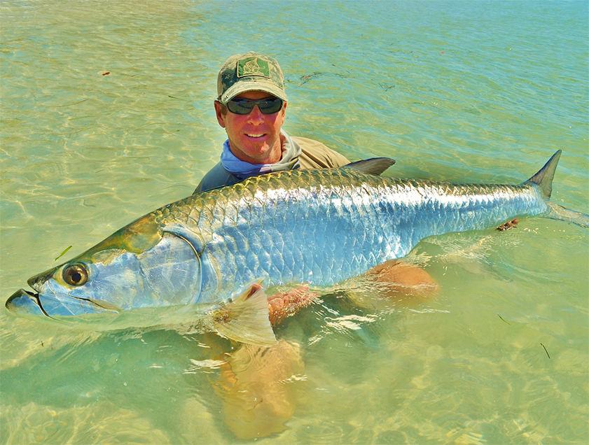 Boca grande englewood tarpon fishing pictures florida for Tarpon fish pictures