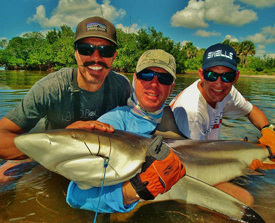 Shark caught with Capt. Jesse of Florida Inshore Xtream Fishing Charters around Boca Grande, Englewood and Pine Island Sound